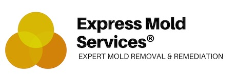 Express Mold Services